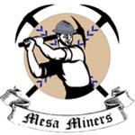 Mesa Miners